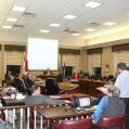 Council Delegation